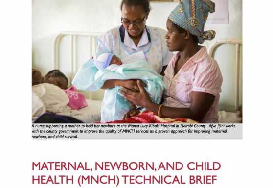 Afya Jijini Maternal, Newborn, and Child Health (MNCH) Technical Brief