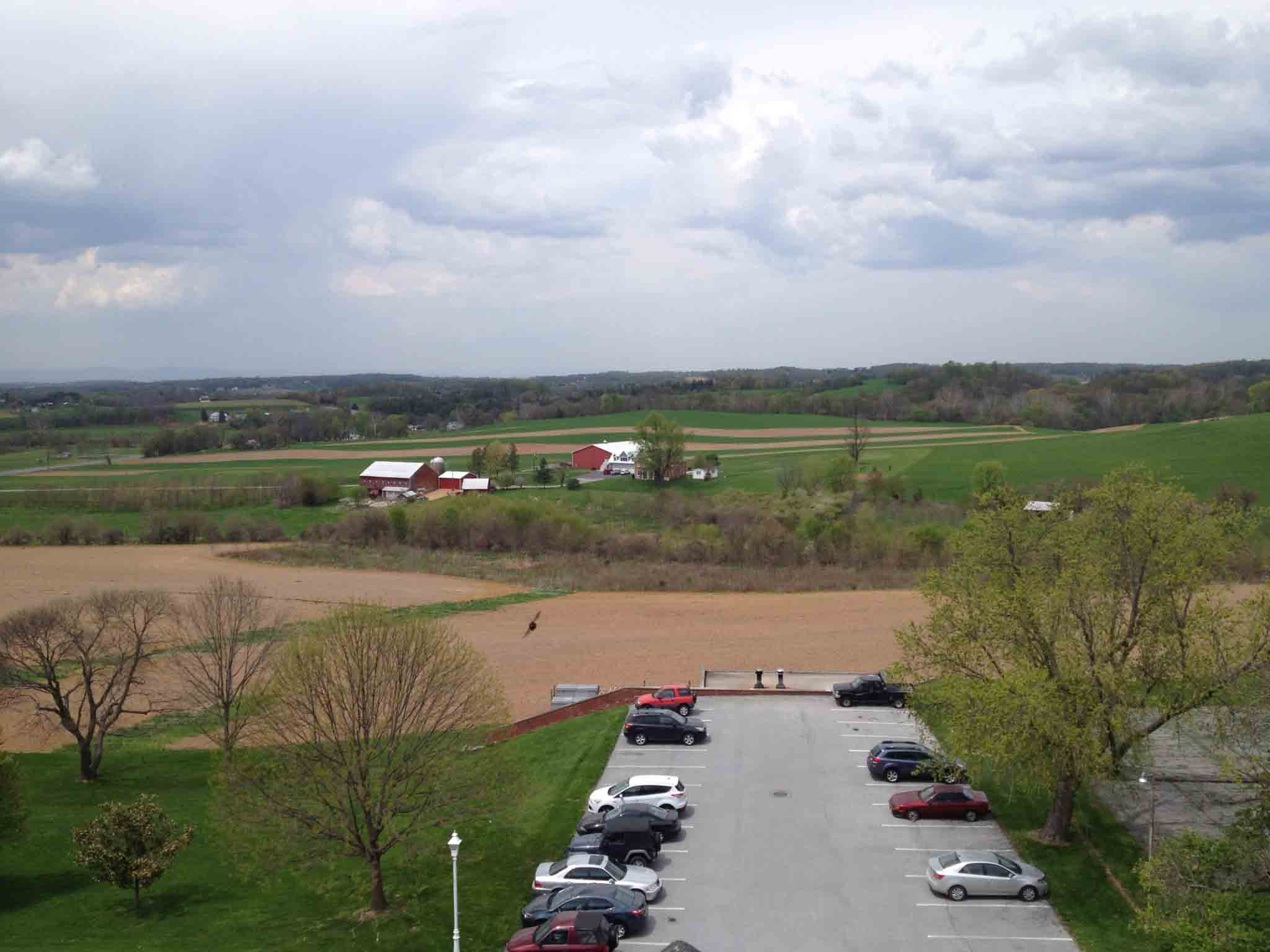 Overlooking the parking lot of the Brethren Service Center in New Windsor, Maryland.